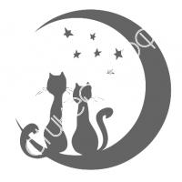 0012. Коты и месяц