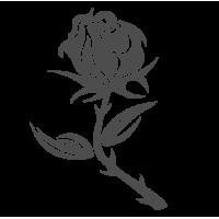 0032. Роза