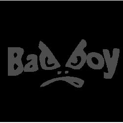 0048. Bad boy