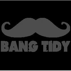 0050. Bang-tidy