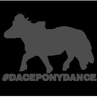 0059. Танец пони
