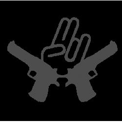0118. Шокер пушки