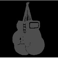 0134. Боксерские перчатки