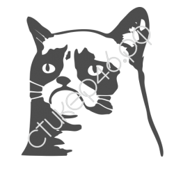 0160. Кот