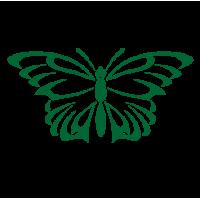0183. Бабочка