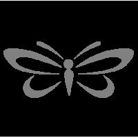 0188. Бабочка