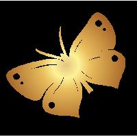 0194. Золотая бабочка
