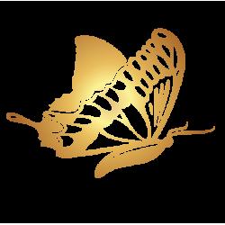 0195. Золотая бабочка