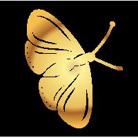 0197. Золотая бабочка