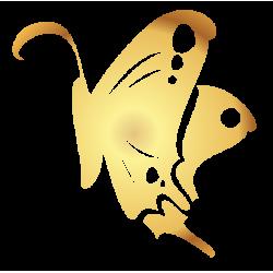 0198. Золотая бабочка