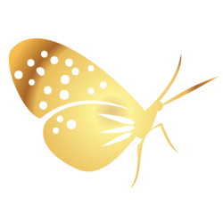 0201. Золотая бабочка