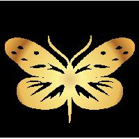 0203. Золотая бабочка