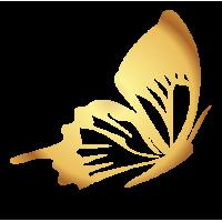 0204. Золотая бабочка
