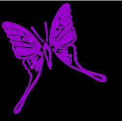 0217. Бабочка
