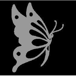 0237. Большая бабочка