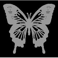 0240. Бабочка