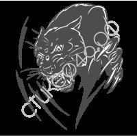 0246. Чёрная пантера