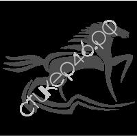 0268. Конь