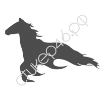 0271. Конь