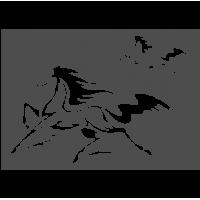 0274. Конь