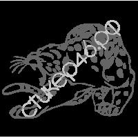 0294. Леопард