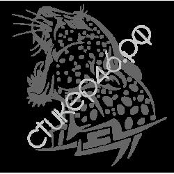 0313. Тигр