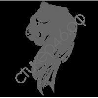 0353. Пантера