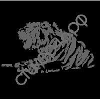 0363. Тигр