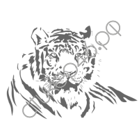 0364. Тигр