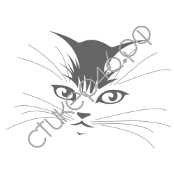 0377. Кошка