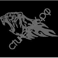 0380. Тигр