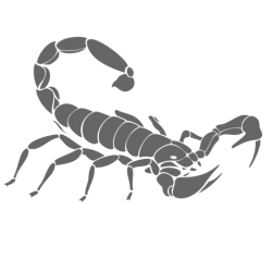 0411. Скорпион
