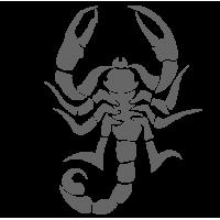 0412. Скорпион