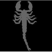 0414. Скорпион