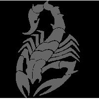 0416. Скорпион