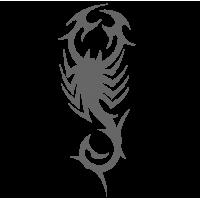 0420. Скорпион