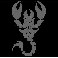 0422. Скорпион