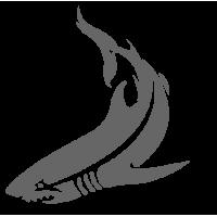 0427. Акула