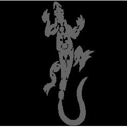 0447. Ящерица