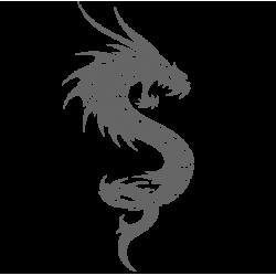 0478. Дракон