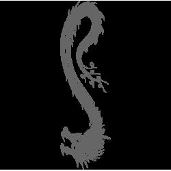 0480. Дракон