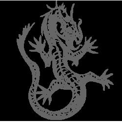 0501. Дракон