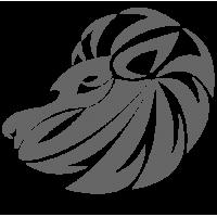 0535. Знак зодиака Лев