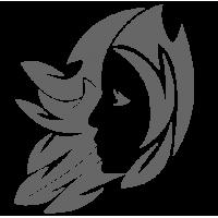0536. Знак зодиака Близнецы Дева