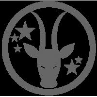 0543. Знак зодиака Козерог