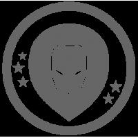 0553. Знак зодиака Лев