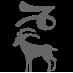 0555. Знак зодиака Козерог
