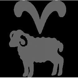 0562. Знак зодиака Овен