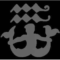 0563. Знак зодиака Водолей