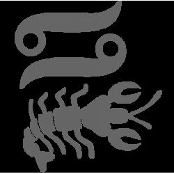 0564. Знак зодиака Рак